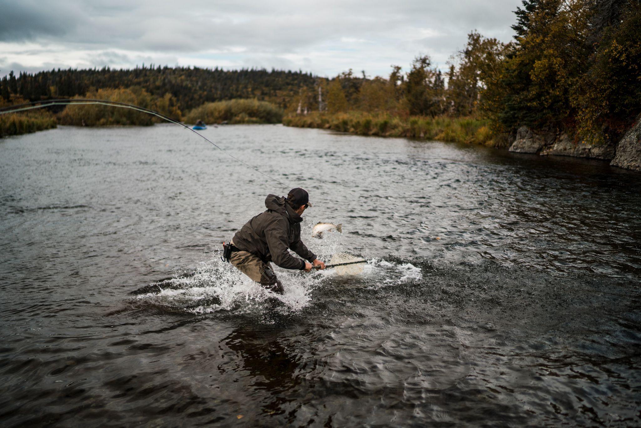 netting a big rainbow trout
